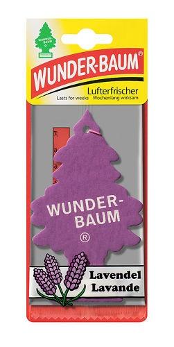 Lavendel  Wunder-Baum